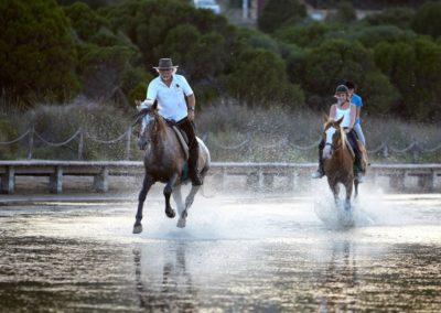B&B Fiore - Horse riding in Chia (cavalcareachia.it)
